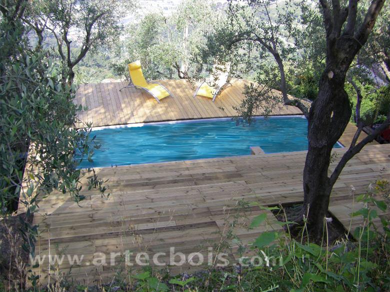 Artecbois terrasses en bois pos es platelages et for Piscine bois nice